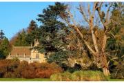 Tyntesfield to posiadłość należąca do organizacji National Trust w Wielkiej Brytanii - Widok na dom