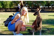 Australia - Melbourne kangury spotykane w parkach są bardzo przyjazne i lubią pozować do wspólnych zdjęć
