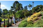 Australia - Melbourne , Royal Botanical Gardens