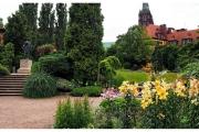 Wrocław i atrakcje dla całej rodziny. Ogród botaniczny pełen ciekawostek i atrakcji.