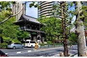 Ulice miasta Tokio - Japonia