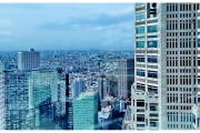 Japonia - Tokio widok na miasto