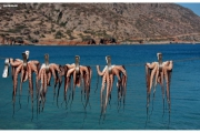 Kreta-atrakcje-turystyczne-zwiedzanie-Grecja_31