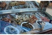 Kreta-atrakcje-turystyczne-zwiedzanie-Grecja_33