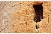 Majorka-Hiszpania-wyspa-wakacje-ceny-co-zobaczyć-atrakcje-turystyczne_11