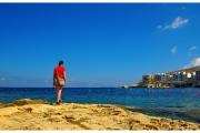 Wyspa Gozo - Malta. Skaliste wybrzeże pełne naturalnych rzeźb w miękkim kamieniu.
