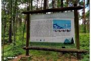 Tajemnicze kręgi kamienne w Odrach. Historia, pochodzenie i inne atrakcje rezerwatu