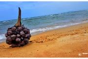 Azja-Phangan-tajlandia-wyspa-blog-podróżniczy-wypoczynek-co-zobaczyć-atrakcje-plaże_13