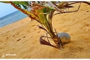 Azja-Phangan-tajlandia-wyspa-blog-podróżniczy-wypoczynek-co-zobaczyć-atrakcje-plaże_14