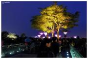 Singapur-Gardens-by-the-Bay-atrakcja-turystyczna-ogrody-futurystyczne