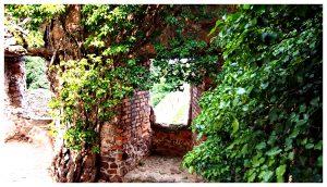 Zamek Chojnik w Karkonoskim Parku Narodowym